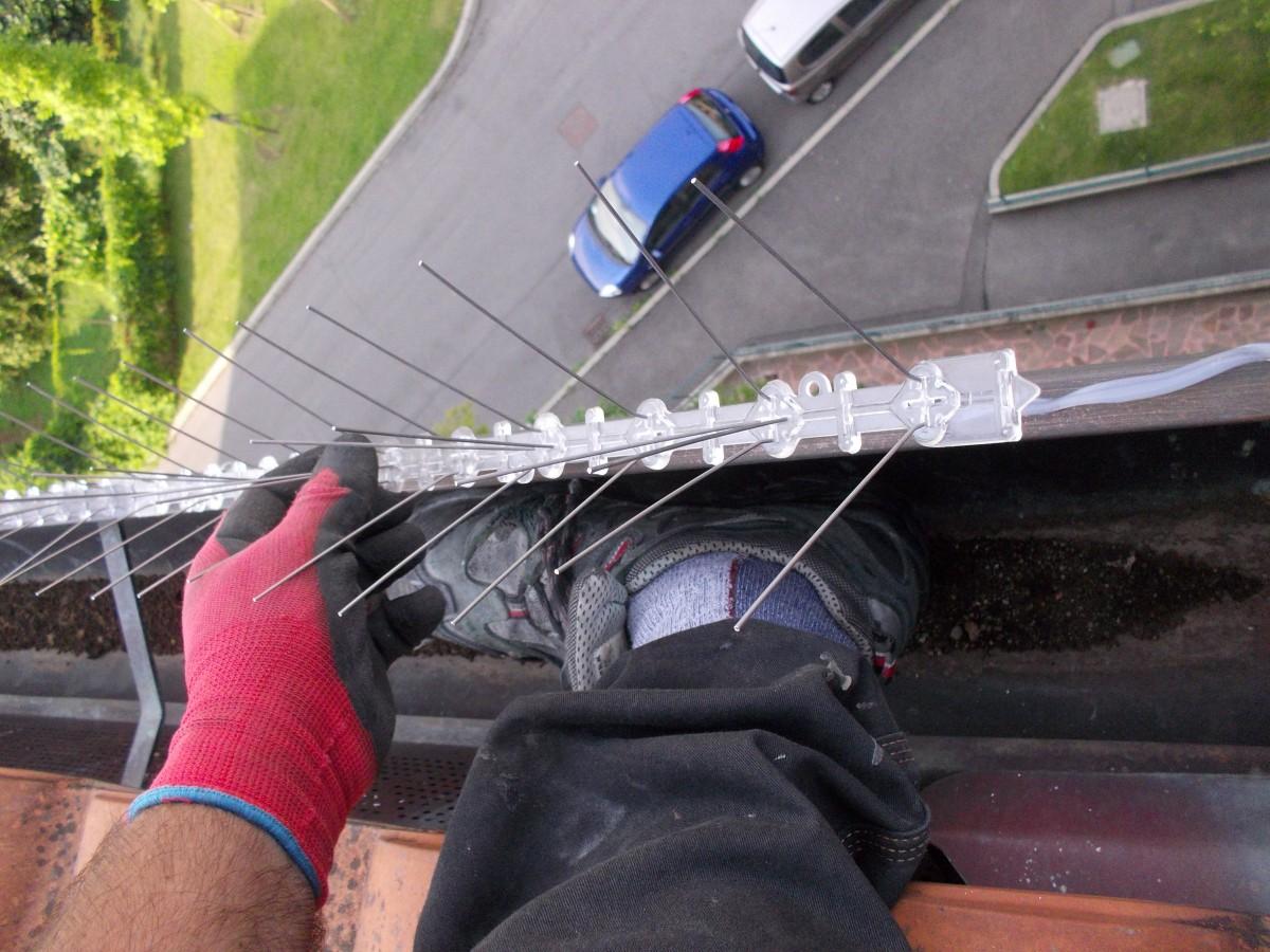 Lavoro interventi su corda bari castellana grotte for Dissuasori per piccioni a nastro rifrangente